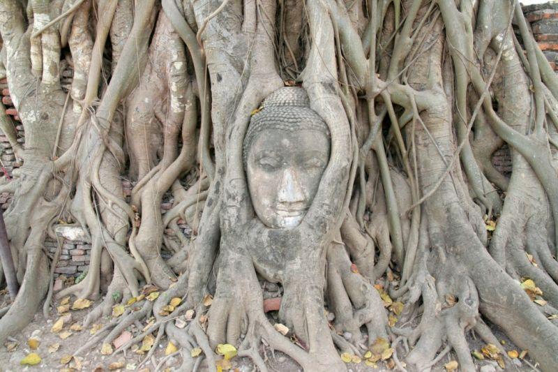 thailande12201024x768.jpg