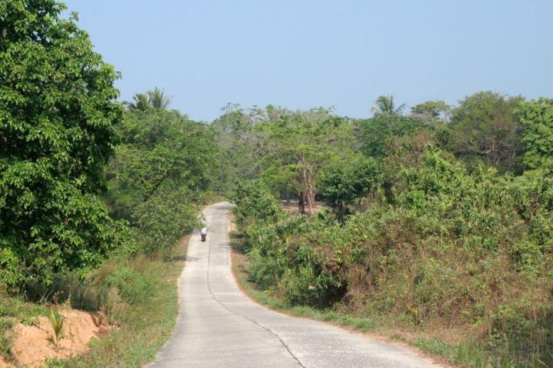 thailande17031024x768.jpg