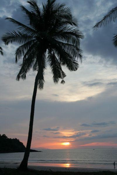 thailande20771024x768.jpg